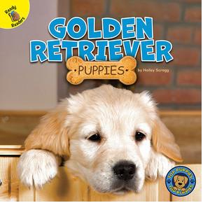 Cover: Golden Retriever Puppies