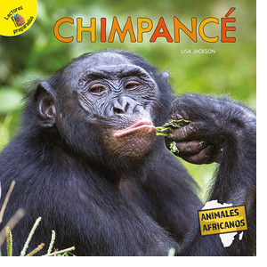 Cover: Chimpancé