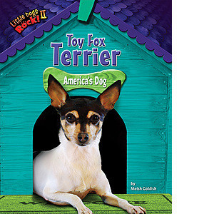 Cover: Toy Fox Terrier