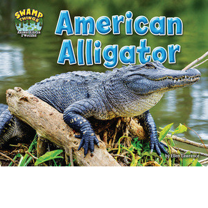 Cover: American Alligator