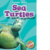 Cover: Sea Turtles