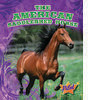 Cover: The American Saddlebred Horse