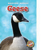 Cover: Geese