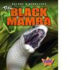 Cover: The Black Mamba