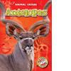 Cover: Antelopes