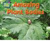 Cover: Amazing Plant Bodies: Tiny to Gigantic