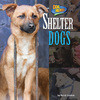 Cover: Shelter Dogs