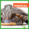Cover: Turtles