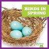 Cover: Birds In Spring