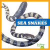 Cover: Sea Snakes