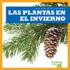 Cover: Las plantas en el invierno (Plants in Winter)