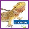 Cover: Lizards