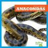 Cover: Anacondas