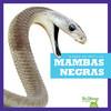 Cover: Mambas negras (Black Mambas)