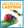 Cover: Life Cycle of a Ladybug