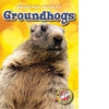 Cover: Groundhogs