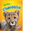 Cover: Baby Cheetahs