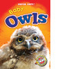 Cover: Baby Owls