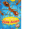 Cover: Fire Ants