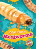 Cover: Mealworms