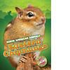 Cover: Eastern Chipmunks