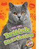Cover: British Shorthairs