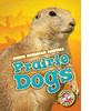 Cover: Prairie Dogs