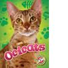 Cover: Ocicats