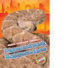 Cover: Diamondback Rattlesnakes