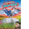 Cover: Herons