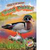 Cover: Wood Ducks