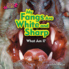 Cover: My Fangs Are White and Sharp (Vampire Bat)