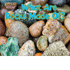 Cover: What Are Rocks Made Of?