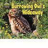 Cover: Burrowing Owl's Hideaway