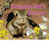 Cover: Kangaroo Rat's Burrow
