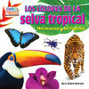 Cover: Los colores de la selva tropical: Hermosos y brillantes