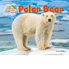 Cover: Polar Bear