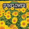 Cover: Sunflower