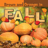 Cover: Brown and Orange in Fall