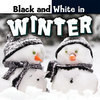 Cover: Black and White in Winter