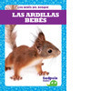 Cover: Las ardillas bebés (Squirrel Kits)