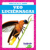 Cover: Veo luciérnagas (I See Fireflies)
