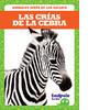 Cover: Las crías de la cebra (Zebra Foals)
