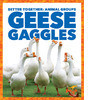 Cover: Geese Gaggles