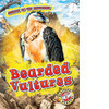 Cover: Bearded Vultures