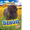 Cover: Bison
