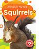 Cover: Squirrels