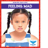 Cover: Feeling Mad
