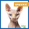 Cover: Sphynx