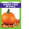 Cover: What I See in Fall